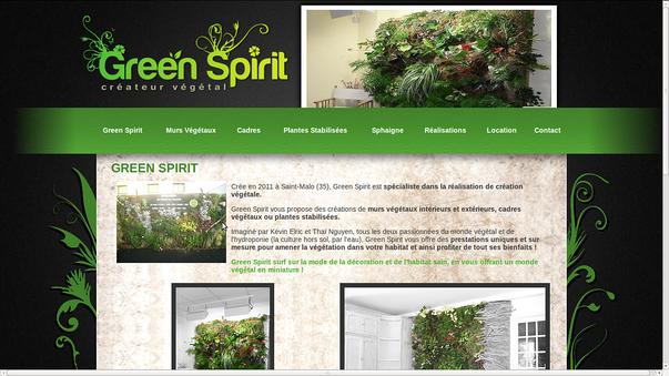 green spirit saint-malo, pour la creation d un site internet