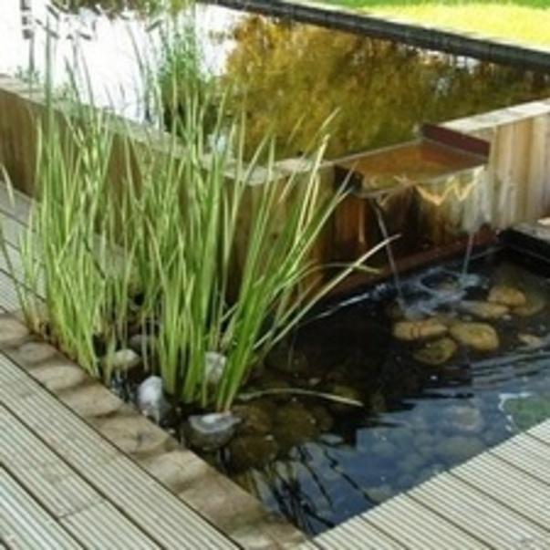 creatif jardin a hillion : un professionnel pour votre jardin